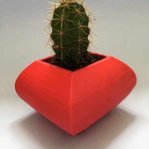 red curved cactus planter