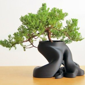gcreate bonsai planter